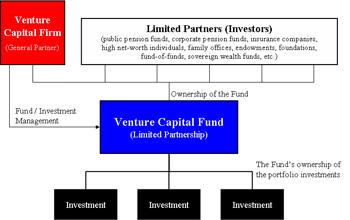 Venture-Capitalist